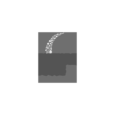 Future Focused Education logo