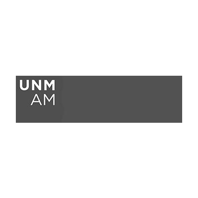 The University of New Mexico Art Museum logo